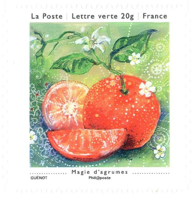France-Agrumes-Carnet-1-4