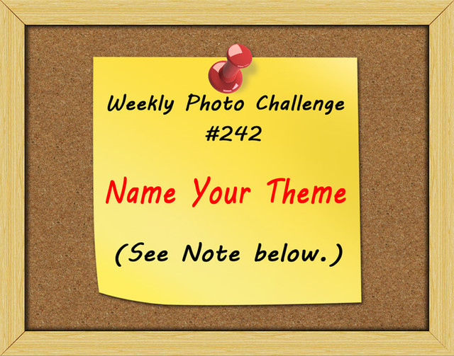 WPC-242-Name-Your-Theme