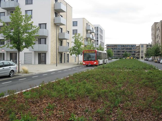 IMG-6202-BSAG-Wg-4677-Komodore-Johnsen-Boulevard