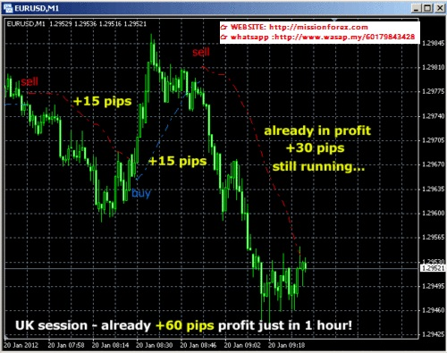 Scalping indicator from Karl Dittman 100 Pips Daily Scalper with Alerts for MT4 bonus Web Trading System