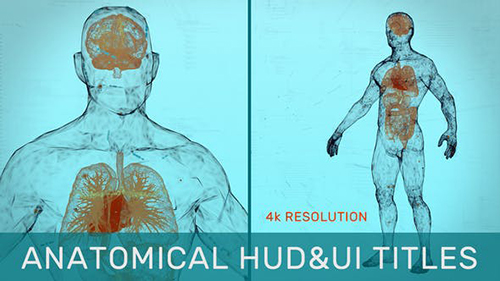 Anatomical HUD&UI Titles 31538280 - Project for After Effects (Videohive)