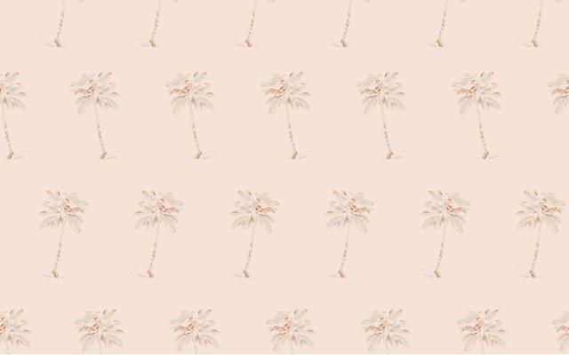 Palm-Background-Desktop-01-01