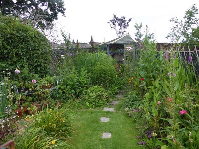 Back-of-garden-01-07-19