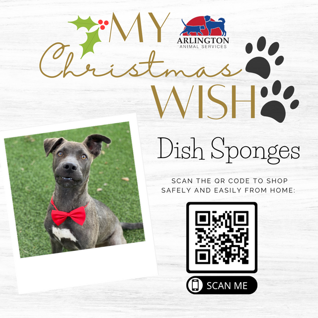 Animal-Services-2020-Angel-Tree-064.png