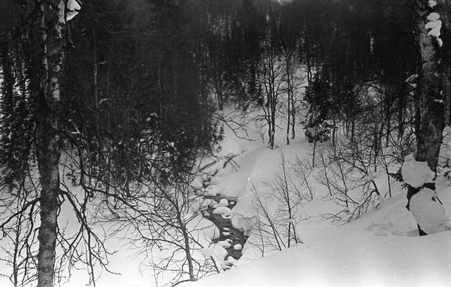 Dyatlov pass 1959 search 52