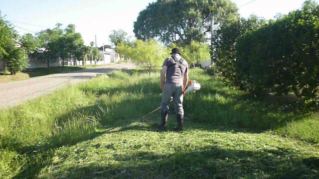 Locales: Lunes 30 y martes 31 se podrá cortar el pasto al frente de los domicilio