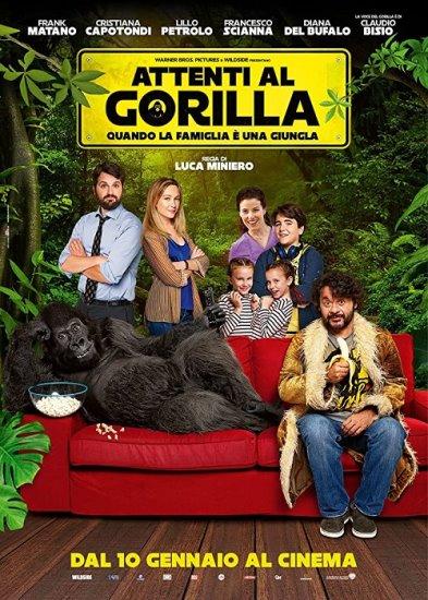 Uwaga na goryla / Attenti al gorilla (2019) PL.WEB-DL.XviD-KiT | Lektor PL