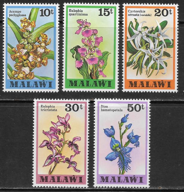 O Malawi 310