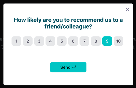 survey screenshot