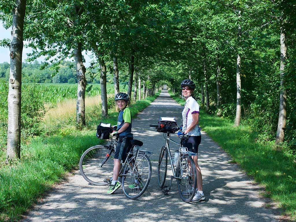 The Insider Secret on Mountain Bike Discovered