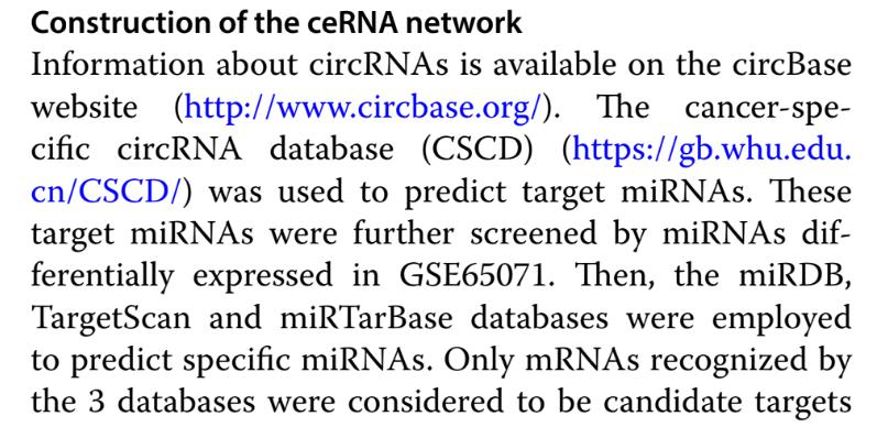 ceRNA