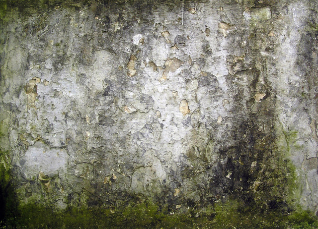 Stone-10322.jpg
