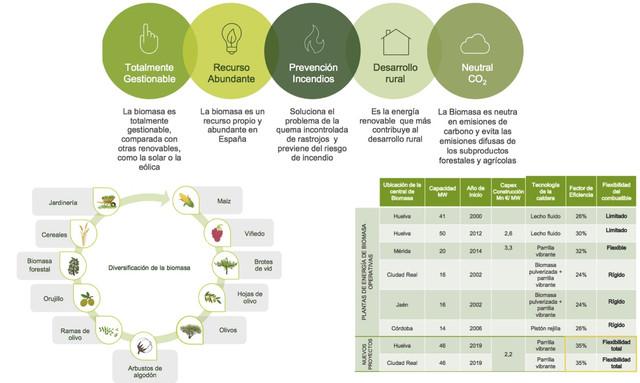 Biomasa ence