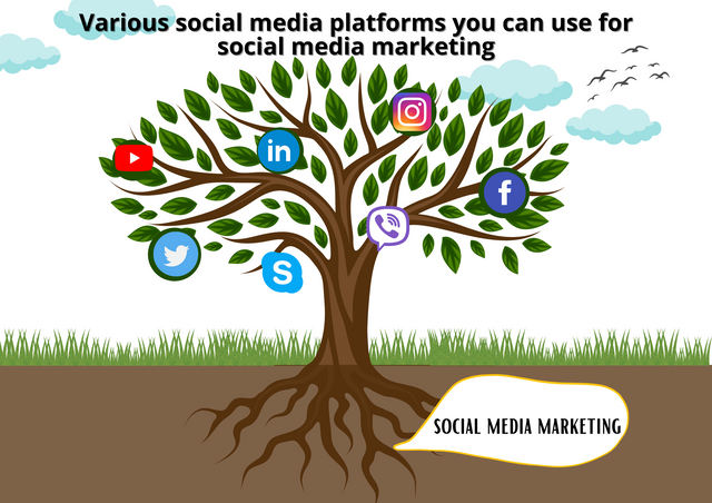 Various-social-media-platforms-you-can-use-for-social-media-marketing
