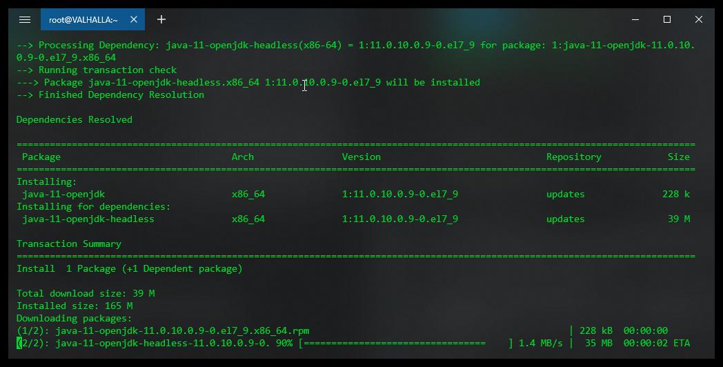 Download of Java 11 in progress