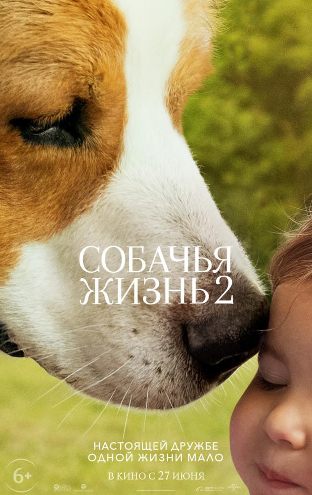 Смотреть Собачья жизнь 2 / A Dog's Journey Онлайн бесплатно - Старый пес Бадди прожил несколько жизней, прежде чем воссоединиться со своим первым...