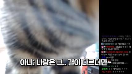 DP-0-19-screenshot