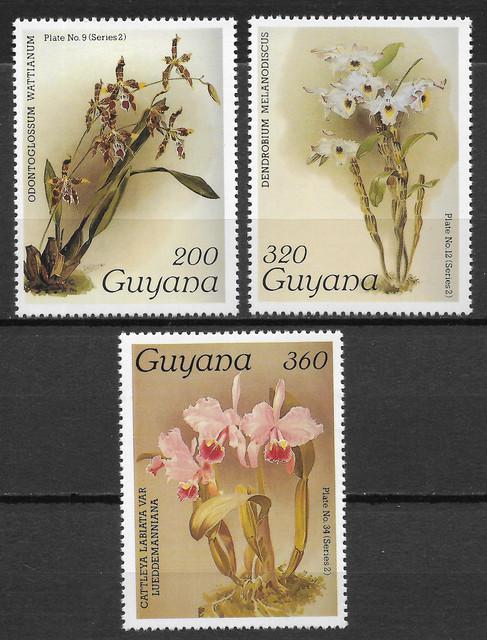 O Guyana 1649