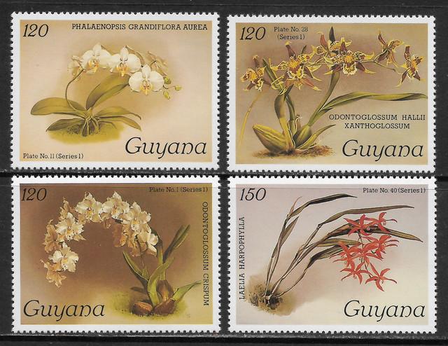 O Guyana 1445