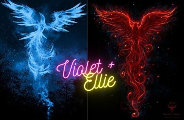 v-and-e-phoenixs