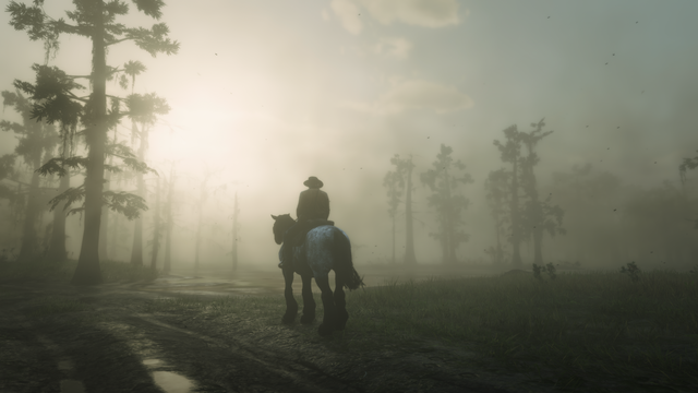Red-Dead-Redemption-2-2018-12-05-11-40-0