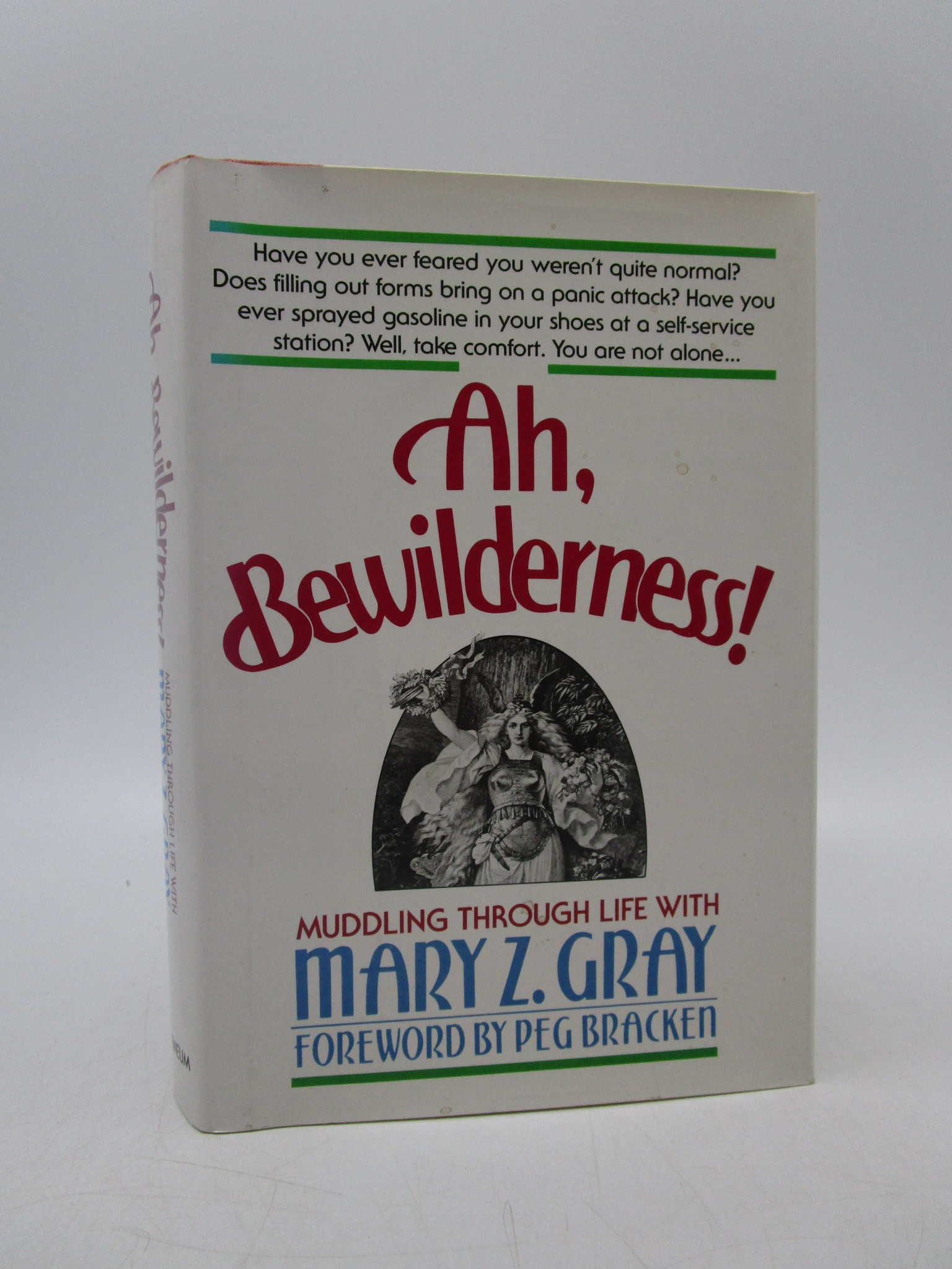 Image for Ah, Bewilderness!: Muddling Through Life With Mary Z. Gray