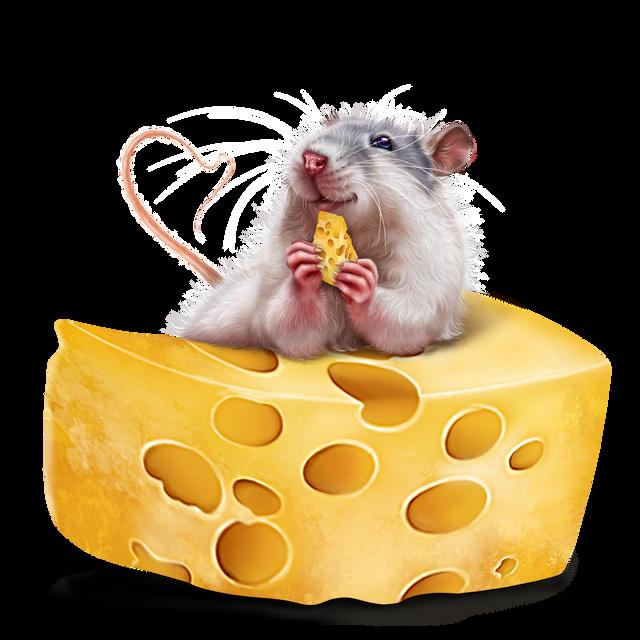 leprechaun-rat-12.png