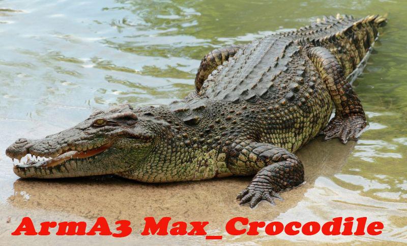 max-crocodile.jpg