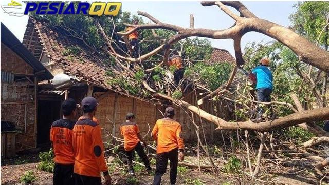 Angin Kencang Menerjang 5 Kecamatan di Kabupaten Ngawi