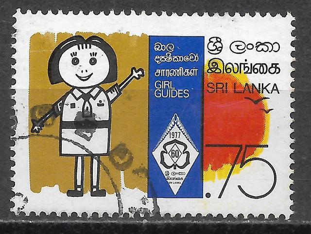 Pfadfinder-Ceylon-476