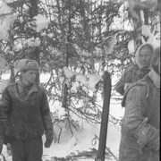 Dyatlov pass 1959 search 32