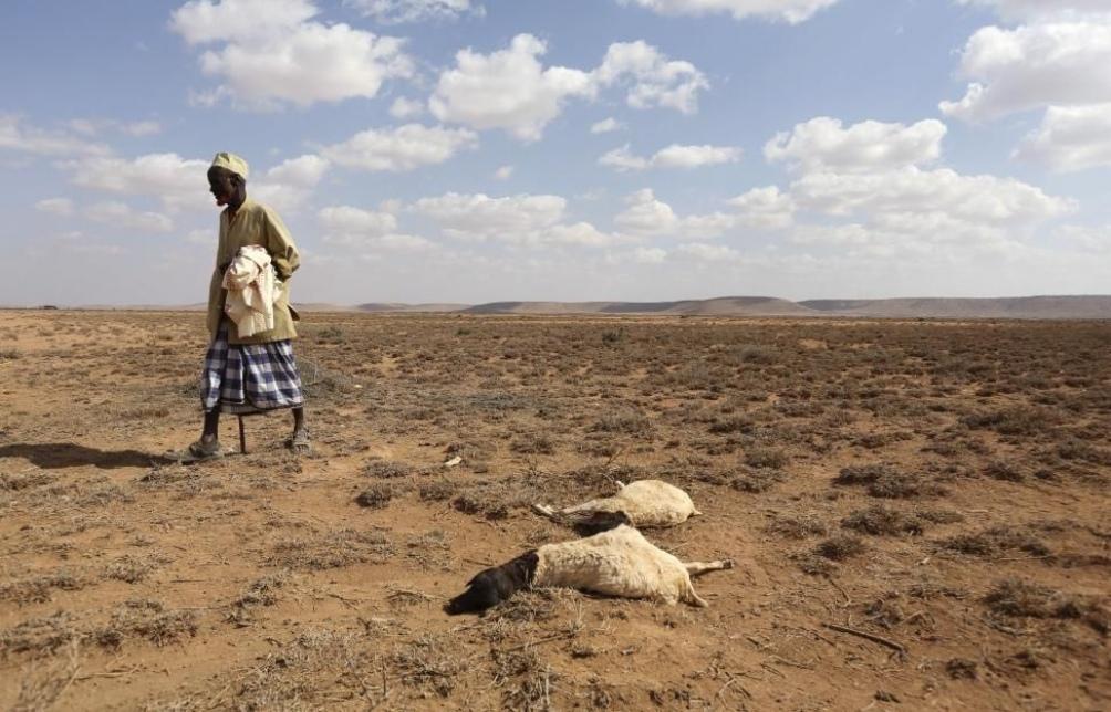 Según el Banco Mundial, el cambio climático puede hacer migrar a 216 millones de personas