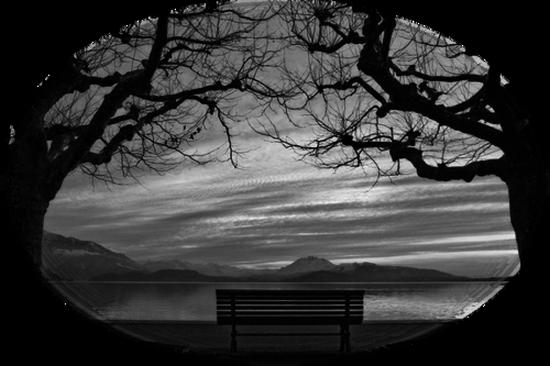 paysage-halloween-69.png