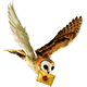 https://i.ibb.co/MS2ZGY2/owl1.png