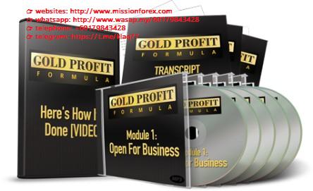 Screenshot-2020-07-29-Gold-Profit-Formula-Boost-Up-Your-Business-Biz-Tutorials-Your-Source-For-Free-