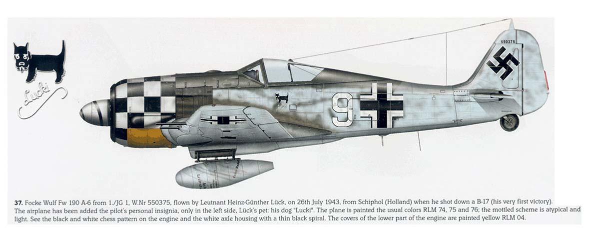 Focke-Wulf-Fw-190-A6-1-JG1-White-9-Heinz