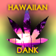 hawaiiandankprofilepic.png