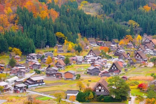 Japan-Sakura-Kobe-Plus-Shirakawago-Holiday-by-SQ-Spring-in-Shirakawago-Gassho-Village