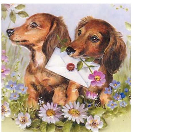 [img]https://i.ibb.co/Mg5tMbw/138108673eb4235174ba4f92d51f5edf-cute-illustration-vintage-postcards.jpg[/img]