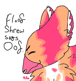 Floof-Shrew-Meme.png