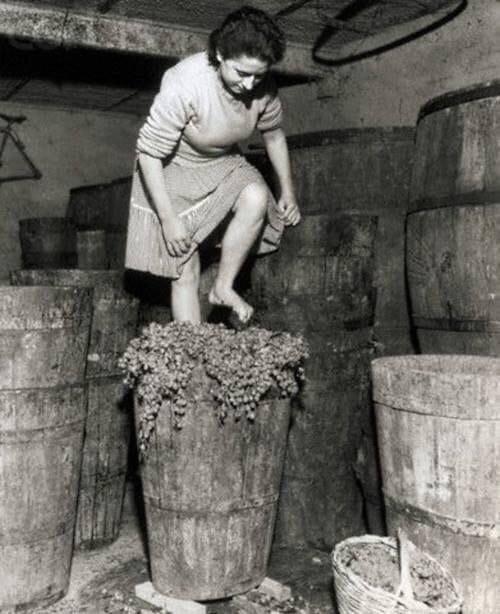 Производство вина в Италии
