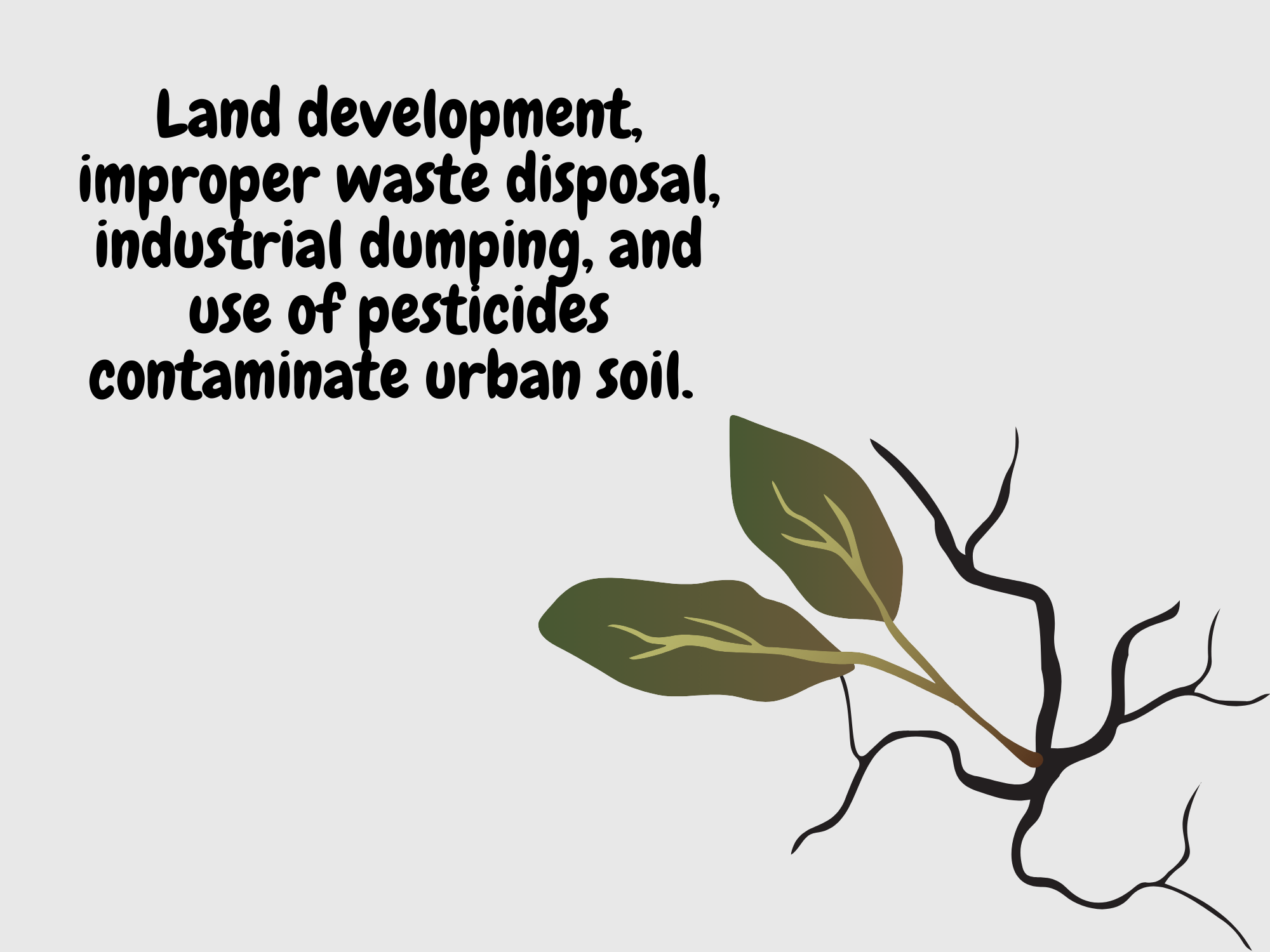 Land-development-improper-waste-disposal-industrial-dumping-and-use-of-pesticides-contaminate-urban