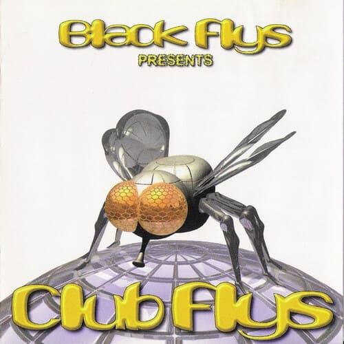 Download VA - Black Flys Presents Club Flys mp3