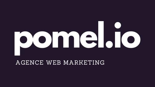 https://i.ibb.co/MhzngDx/Logo-pomel-io-violet.png