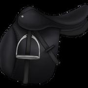 Esatula musta2