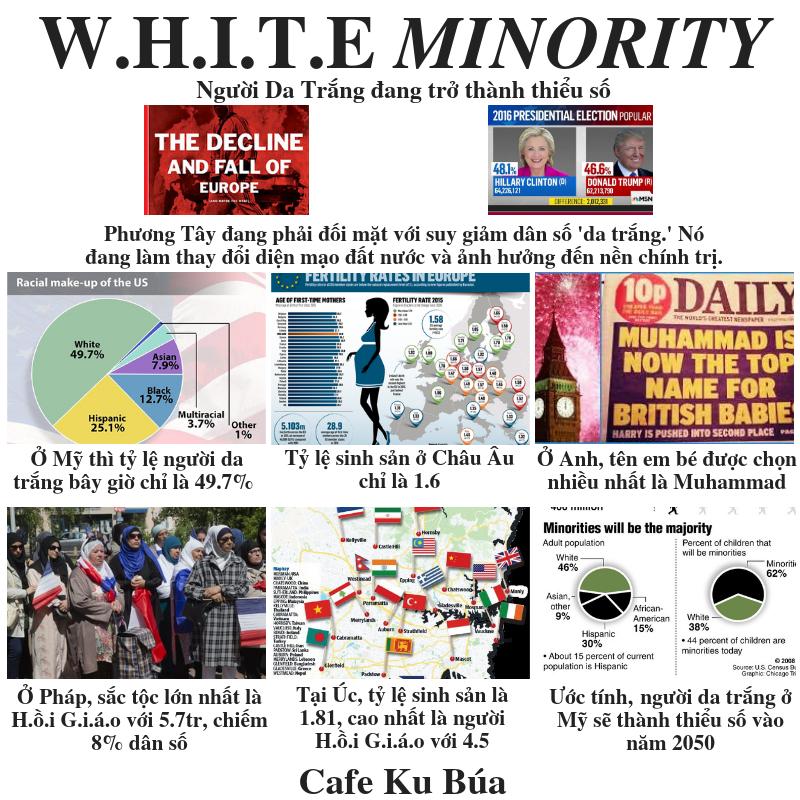 TỶ LỆ SINH ĐẺ VÀ NGƯỜI DA TRẮNG THIỂU SỐ – WHITE MINORITY