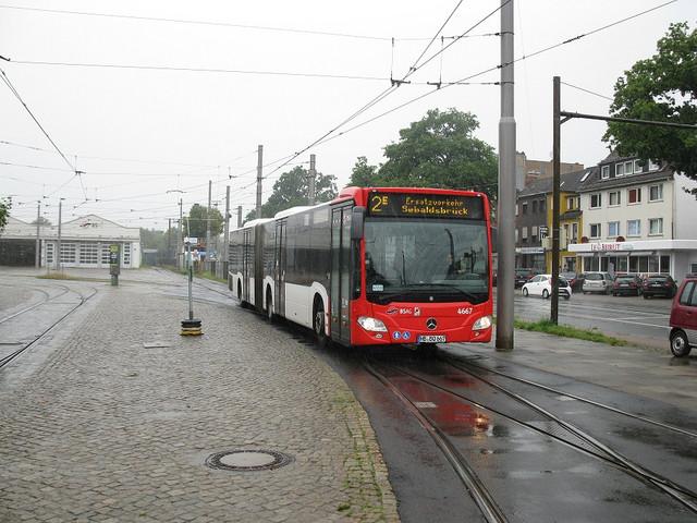 IMG-6236
