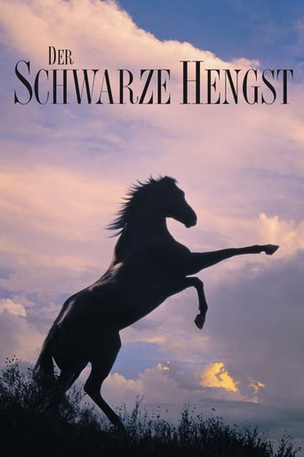 Der schwarze Hengst German REMASTERED 1979 AC3 BDRip x264-SPiCY
