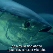cap-E03-Open-Ocean-2001-BDRip-AVC-2x-UKR-ENG-sub-2x-UKR-ENG-Hurtom-00-29-50-01
