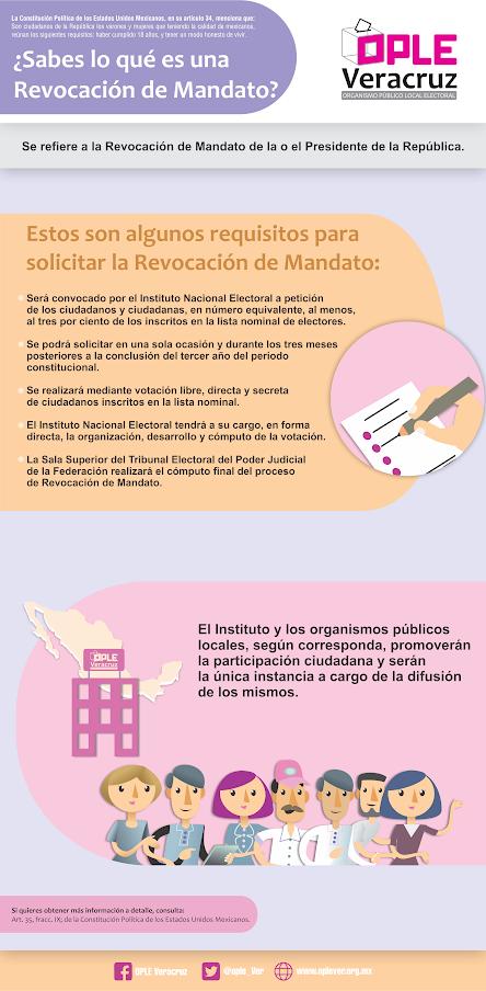 mandato-info